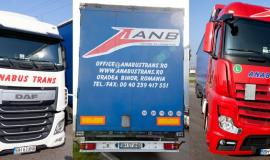 Transport intern si international de marfa Bihor